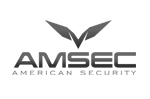 We carry world famous gun safes by AMSEC American Security